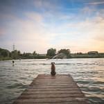 川を見る犬